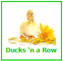 Ducksnarowlogosmaller-1